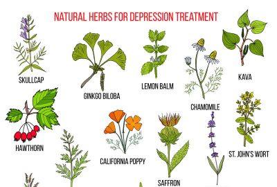 草藥補品減輕壓力